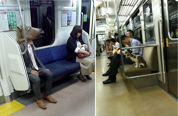 japan trains strange pictures