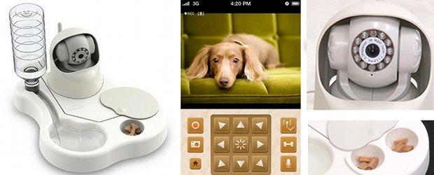 remoca dog dog bowl camera pet