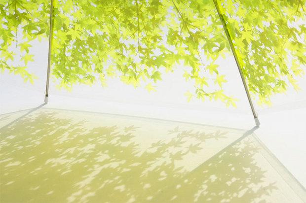 komorebi komore shady leaf parasol