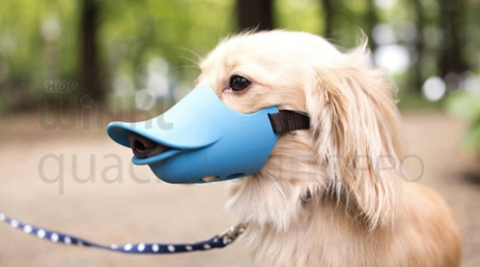 Oppo Dog Muzzle Quack Closed duck bill pet mouth protection