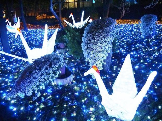 abeno tennoji illuminage illumination light show sengoku warring states period sanada yukimura tennoji park osaka