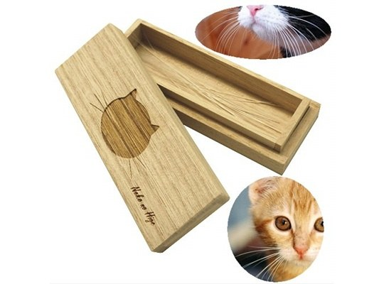 cat whiskers case store feline pet hair japan trends