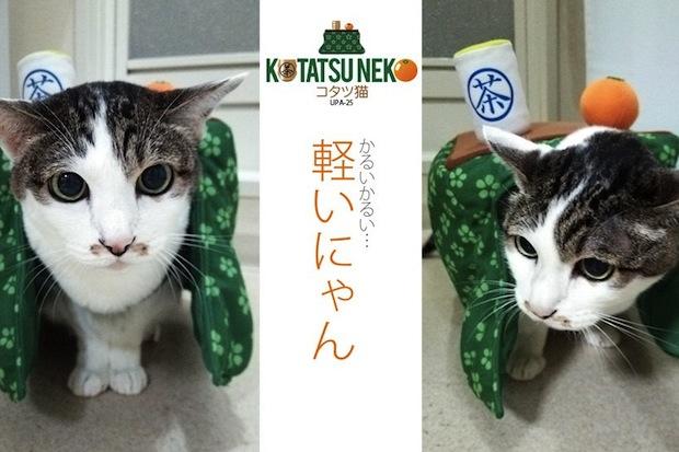 katatsu catatsu neko kotatsu cat portable table clothes