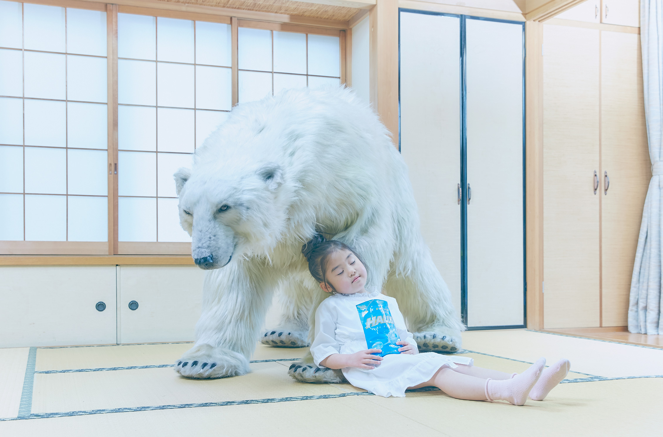 halls delivery bear service polar white animal campaign
