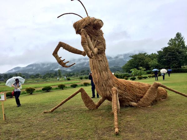 amy goda artwork straw sculpture niigata japan dinosaur praying mantis crab
