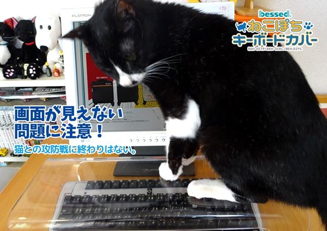 neko pochi cat cover tray keyboard protection