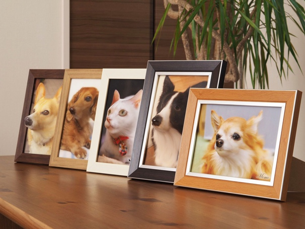 poppet pet relief face photo 3d printed japanese dog cat trend