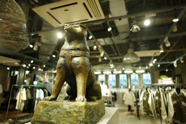 pachiko hachiko shibuya vanquish tokyo store dog landmark tourism