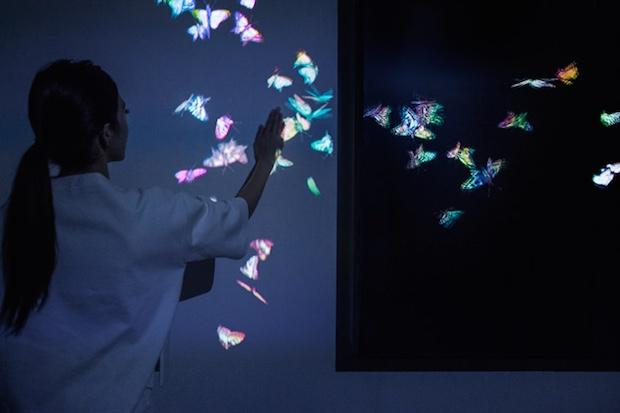 teamlab digital installation flowers transcending boundaries
