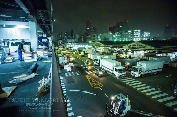 tsukiji wonderland fish market documentary