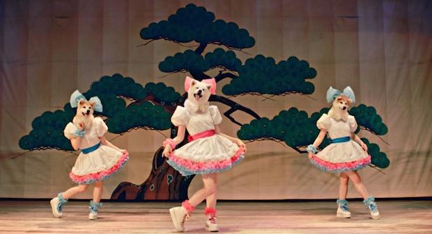 mofu akita prefecture dog inu music video idol promotion