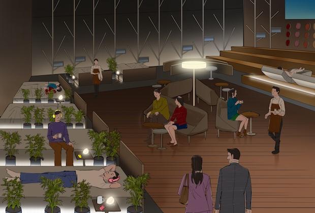 nescafe harajuku cafe sleeping beds tokyo