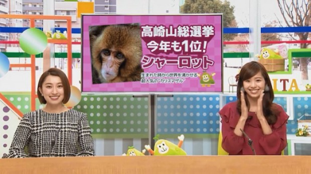 oita city saru tabi monkey promotional video campaign 2