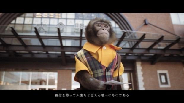 oita city saru tabi monkey promotional video campaign 4