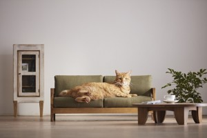 Crafts center in southern Japan creates miniature furniture for cats