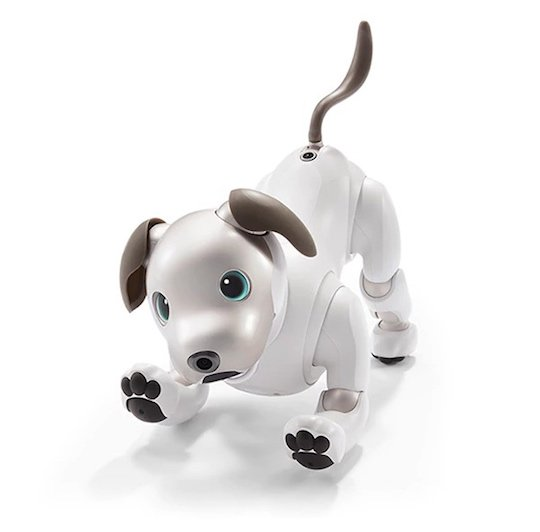 Sony Goes Back To The 1990s With New Aibo Robotic Dog Toy Japan Trends