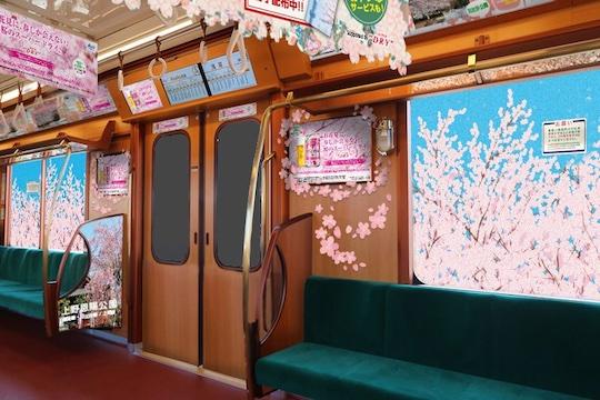 sakura japanese train tokyo metro ginza line japan hanami cherry blossom season spring