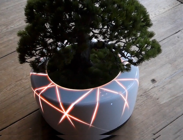 bonsai ai artificial intelligence technology plant robot japan