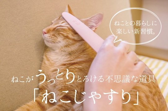 nekojasuri cat groomer brush fur japan metal file